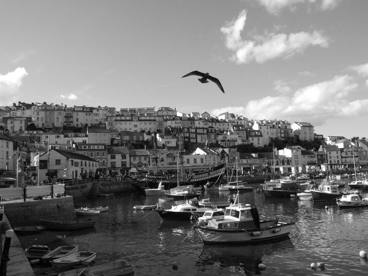 """Brixham Harbour 1"""