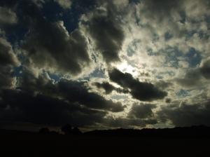 """""""Oxleas Sun Rays"""""""