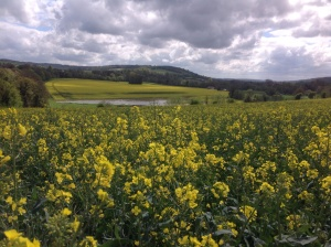 The Garden of Kent